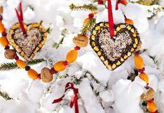 December ~ Advent ~ Week Three: The Light of Bird & Beast ~ Bird Seed Ornaments ~ Recipe
