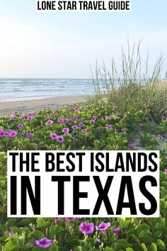 Ready to hit the beach? Come discover the best islands in Texas! best texas islands | best beaches in texas | best texas beaches | texas gulf coast | texas off the beaten path | hidden gems in texas | best places to visit in texas | texas beach vacations | beach trips in texas | beach vacations in texas | island getaways in texas | padre island texas | galveston island texas | south padre island texas | goose island texas | matagorda island texas | mustang island texas | san jose island…