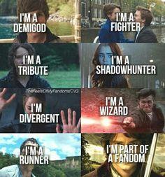Harry Potter | TFIOS | THG | The Maze Runner | The Mortal Instruments | Divergent | Hobbit | Fandoms