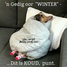 Good Morning Images, Good Morning Quotes, Lekker Dag, Goeie Nag, Afrikaans Quotes, Cute Quotes, Stay Warm, Bean Bag Chair, Winter