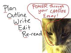 online essay mla citation