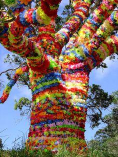 Splore 2010 tree | Flickr - Photo Sharing!