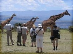 Natur og eksotiske steder i Afrika