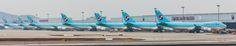 Korean Air planes in a row.