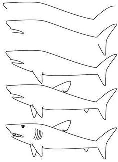 tekenkaart haai