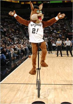 The Coyote.... San Antonio Spurs