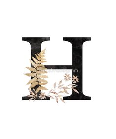 Monogram H Black Gold Flowers And Foliage by floralmonogram h harfi 'Monogram H Black Gold Flowers And Foliage' by floralmonogram Stylish Letters, Stylish Alphabets, Girly Drawings, Alphabet Art, Graffiti, Flower Backgrounds, Photographing Kids, Retro Art, Gold Flowers
