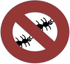 How to get rid of ants. No more ant spray pet girl