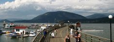 Okanagan-Shuswap Visitor and Vacation Tips Salmon, Arm, Vacation, History, Beach, Water, Tips, Outdoor, Gripe Water