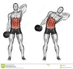 https://www.dreamstime.com/stock-illustration-exercising-side-slopes-standing-bodybuilding-target-muscles-marked-red-initial-final-steps-image43608727