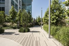 What Is Too Much When It Comes To Landscaping - House Garden Landscape Urban Landscape, Landscape Design, Paving Texture, Utrecht, Paving Pattern, Paving Design, Linear Park, Commercial Landscaping, Public Realm