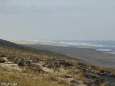 Plage du Grand Crohot sur la presqu'île du Cap-Ferret en Gironde…
