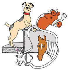 Veterinary Technician #choose2Bmore at www.pennfoster.edu