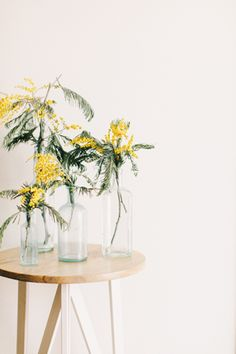 Wispy centerpieces made with mimosa acacia | Tinge: Floral Design by Ashley Beyer #mimosa #acacia