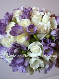 ivory roses with ivory and purple freesia -- can also add eucalyptus for greenery.