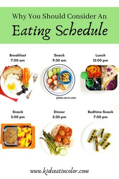 Healthy Eating Schedule, Diet Schedule, Eating Time Schedule, Eating Healthy, Healthy Food, Healthy Living, Healthy Recipes, Best Time To Eat, How To Eat Better
