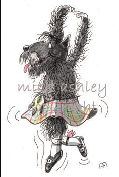 Scottish Terrier - Highland Fling