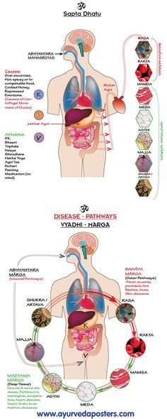 "Ayurveda: Balance of hormones and fluids through ""satwik"" (balanced and nutritious) diet! - www.awakening-intuition.com"