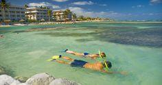 Snorkel at Holiday Inn Resort Montego Bay, Jamaica.  #holidayinnresortjamaica #montegobay #jamaica #holidayinnresort #holidayinn #vacation #travel #watersports #snorkel #holidayinnresortmontegobay #holidayinnjamaica #holidayinnmontegobay #beach #ocean #sun #sand #sea.