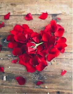 Ana Rosa Valentine | Ann Rosa Hearts