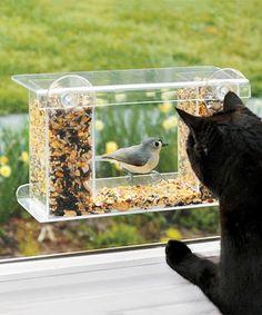 Plow & Hearth Clear Window-Mount Bird Feeder   zulily