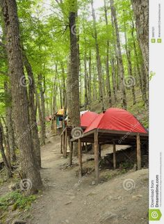 RV And Camping. Great Ideas To Think About Before Your Camping Trip. For many, camping provides a relaxing way to reconnect with the natural world. If camping is something that you want to do, then you need to have some idea Camping Glamping, Camping Hacks, Outdoor Camping, Camping Essentials, Camping Ideas, Tent Platform, Cabins In The Woods, Campsite, Bushcraft