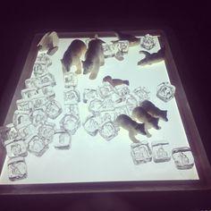 Polar Bears & Acrylic Ice Cubes on the Light Table (from Crozet Play School) Animal Activities, Sensory Activities, Winter Activities, Preschool Winter, Snow Light, Winter Light, Sensory Table, Sensory Bins, Artic Animals