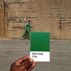 Pantone Project #pantone #lovepalas #palasjewellery #palas #colour #inspiration #love
