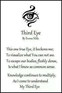 Third Eye.... the one that sees without seeing ...the intuition ...