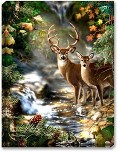 """Art by Dona Gelsinger - 18"""" x 24"""" Backlit Light Up Print - Includes Remote with CR2025 battery - Made in Oregon, USA using imported and US parts - Power Source: Requires 6 AA Batteries, not included -"""