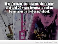 Oh the sad reality. Also, this just makes the sadness worse! Poor tree!