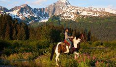 Bardy's Trail Rides- Alaska Horseback RidingSeward, AK 99664 Tel. 907-362-7863 Visit Bardy's Trail Rides Website Email Bardy's    .