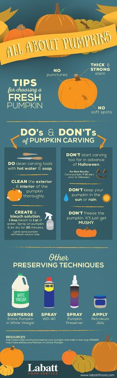 Its almost pumpkin carving season! Here are some do's and dont's to help your pumpkin last through Halloween! Holidays Halloween, Halloween Treats, Halloween Pumpkins, Happy Halloween, Halloween Party, Haunted Halloween, Halloween Desserts, Favorite Holiday, Holiday Fun