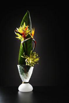 花材:ストレッチア シャンデリアーナ 花器:ガラス 第1回社中展の「ikebana innovation」の案内はがきのために撮影した作品です。