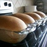 Scrumptious and Simple Honey Wheat Bread Recipe - makes 4 loaves. Looks like my recipe but without the milk. I'll cut the sugar next time. Honey Wheat Bread, Wheat Bread Recipe, Bread Recipes, Cooking Recipes, Dairy Recipes, Milk Recipes, I Love Food, Good Food, Yummy Food