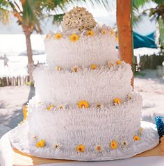 Don't be fooled: this is a cake-shaped piñata (Union Photography)