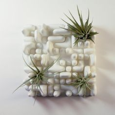 This is a modular planter set of two panels made of plastic that can hold many air plants. They make caring for your air plants a breeze, because you can move them around easily for watering and sunning. Available in a wide variety of colors.  Each object is 4.6 inches square (11.8 cm) and 2 inches tall (5 cm). They can be set on a flat surface like a desk or mounted to a wall using the included double sided foam tape.  The design is based on a mathematical pattern for diffusing sound. You…