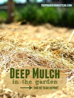 how to use deep mulch in your garden for better moisture retention and fewer weeds! Organic Vegetables, Growing Vegetables, Gardening For Beginners, Gardening Tips, Bokashi, Grow Your Own Food, Garden Projects, Garden Ideas, Backyard Ideas
