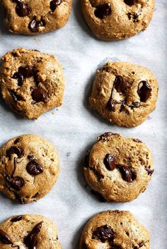 Outrageously delicious chocolate chip protein cookies made with almond butter, coconut sugar, coconut flour and protein powder. These are the perfect healthy dessert or snack. 110 calories and nearly 5g protein per cookie! Protein Desserts, Healthy Protein Snacks, Protein Cookies, Healthy Desserts, Healthy Cookies, Protein Foods, Protein Bars, Protein Muffins, Protein Recipes