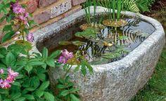 Kein Platz für einen großen Teich? Kein Problem! Ein Quellstein, ein kleines Becken oder ein Wasserspiel passen überall hin. Hier finden Sie Anregungen für die Gestaltung kleiner Wassergärten.