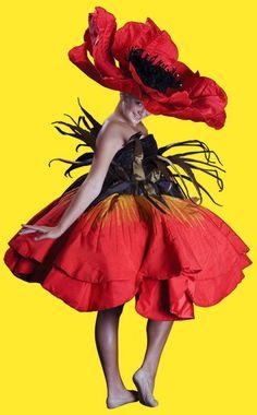 Poppy dress||Google Image Result for http://www.jennygillies.com/images/jgpoppyindexbg.jpg