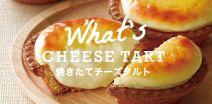 bake cheese tart, jiyuugaoka/shinjuku/omiya