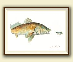 PRINT- Redfish bait blue crab -saltwater gamefish - fishing art - fish print painting art print - fishing decor - Art Print by Juan Bosco by SanMartinArtsCrafts on Etsy