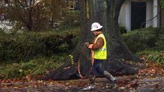 Lawmakers are looking into what it would take to bury power lines around New York City after Sandy. National Weather, Bury, New York City, Nyc, New York, Berry