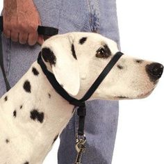 Does your dog pull on the leash or lunge ahead of you when you take him for a walk?   The Premier Pet Gentle Leader Dog Harness is THE effective way to stop your dog from pulling so you can walk without feeling dragged.