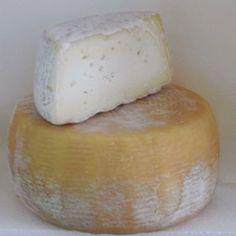 FORMAGGIO DI PIETRACATELLA P.A.T. Formaggio grasso, di breve stagionatura, a pasta semidura. Dalle grotte tufacee di Pietracatella, esce stagionato questo formaggio che si definisce a latte misto in quanto, a seconda della disponibilità, per la sua produzione viene impiegato latte di vacca o di capra o di pecora.