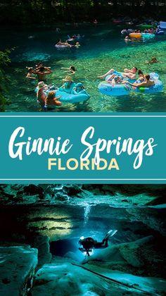 Florida Vacation Spots, Dream Vacation Spots, Places In Florida, Florida Travel, Vacation Places, Vacation Destinations, Dream Vacations, Vacation Trips, Travel Usa
