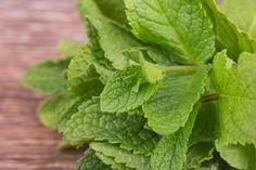 5 voordelen van pepermunt