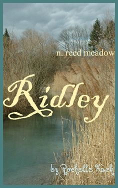 Baby Girl or Boy Name: Ridley. Meaning: Reed Meadow or From the Reed Meadow. Origin: Old English. https://www.pinterest.com/vintagedaydream/baby-names/