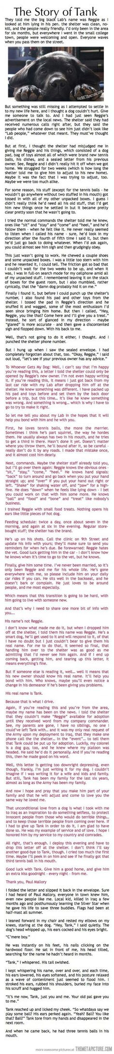 The Story of Tank! I just cried my eyes out...only those that have a deeper love for their doggies truly understand!!! ❤ My Sadie, Oliver & Wrecker much more than you can imagine.